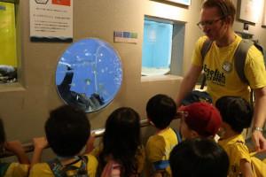 英語保育園幼稚園 遠足 しながわ水族館 glass fish