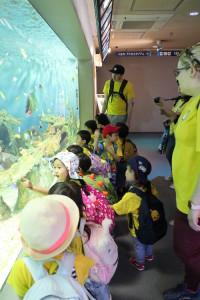 英語保育園幼稚園 遠足 しながわ水族館 熱帯魚