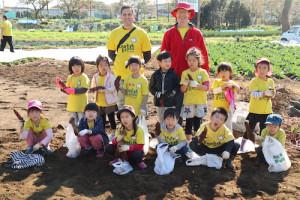 保育園,幼稚園,遠足,芋掘り,横浜,international school